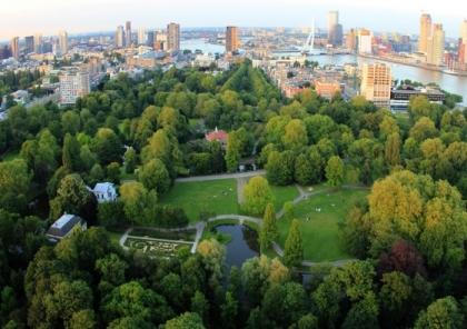 the-park-rotterdam